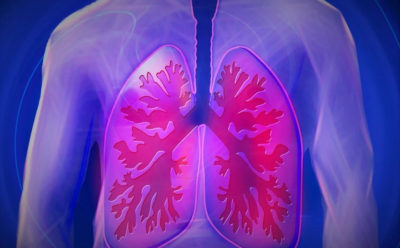 FierceBiotech: Algernon signs Novotech up for midstage respiratory therapy test